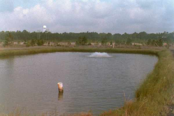 2 Acre Pond Construction : Using vertical substrates in freshwater prawn production